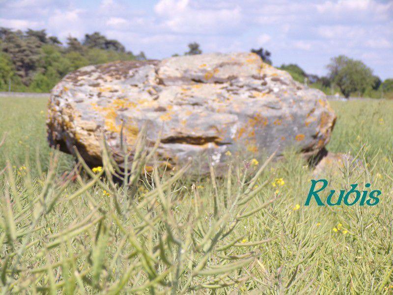 Dolmen du Palet de Gargantua ou du Siège des Fées, Brizay