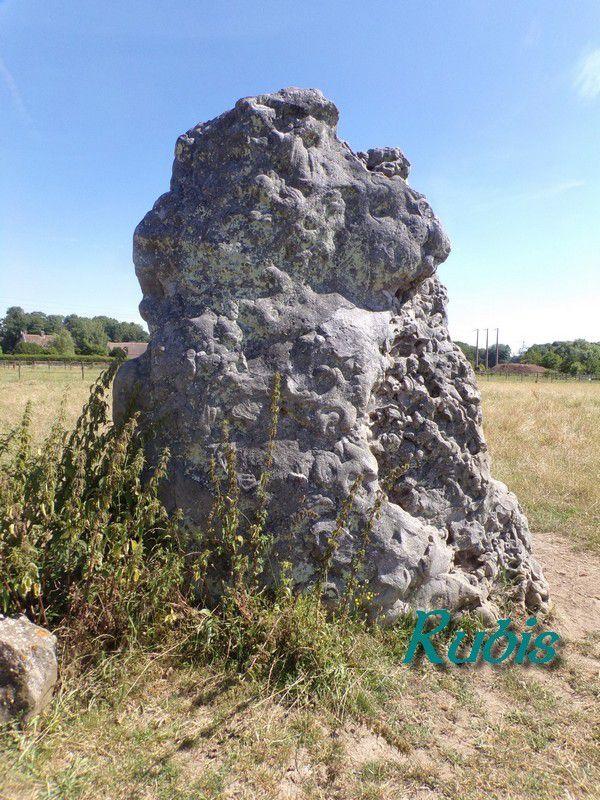 Menhir du But de Gargantua, Maintenon (28)