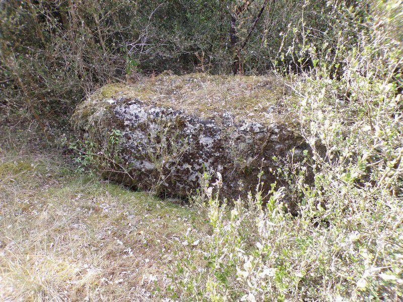 Menhir du Camp du Grand Vitain, Averdon (41)