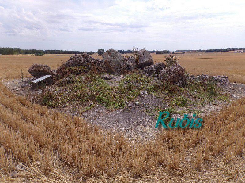 Dolmen et polissoir de Haute Bretagne ou des Hauts de Bretagne ou de Grande Bretagne, Huisseau-en-Beauce