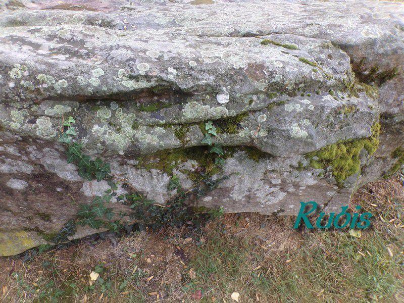 Menhir-polissoir de Souhé ou de la Pierre Levée, Naintré