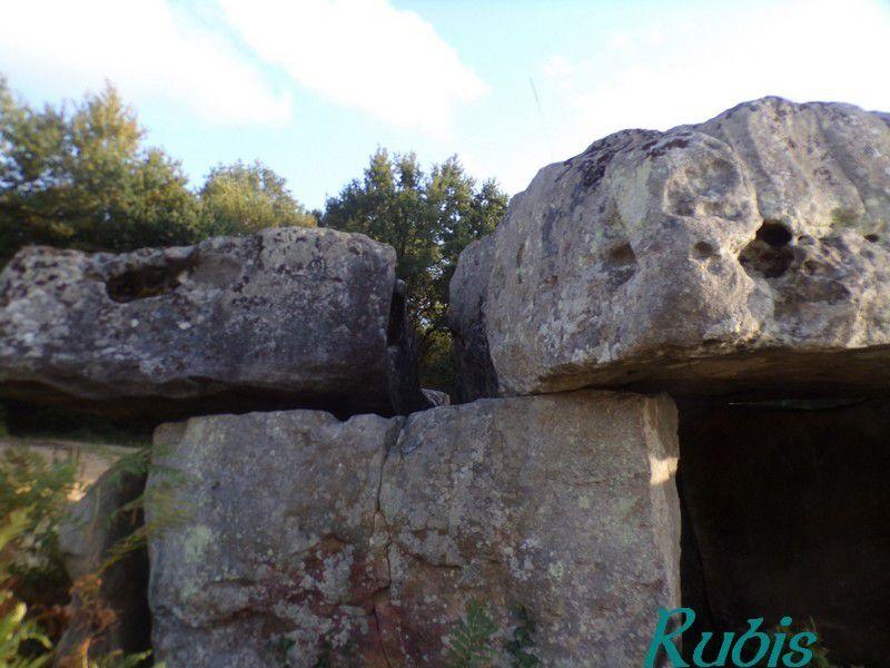 Dolmen de Garde-Epée ou de la Vache, Saint Brice (16)