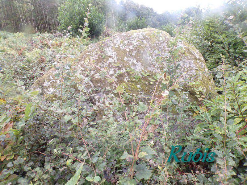 Dolmen de la Pierre Levée ou de Peyrelevade de la Morélie, Payzac