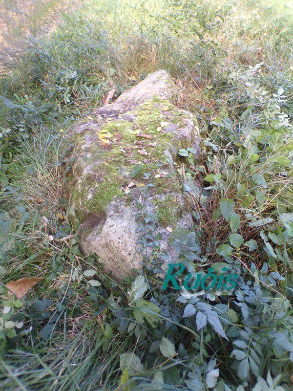 Dolmen de Peyrelevade ou de Peyro-Levado, Villamblard
