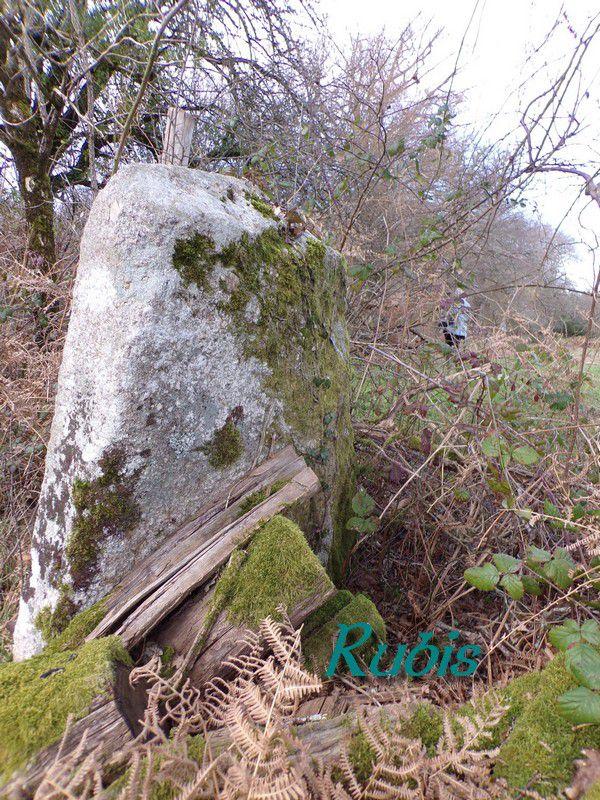 Menhir du Rousseix ou de la Croix du Rousset, Blond