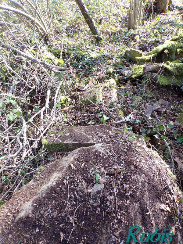Dolmen de Ruillères, Blond (87)