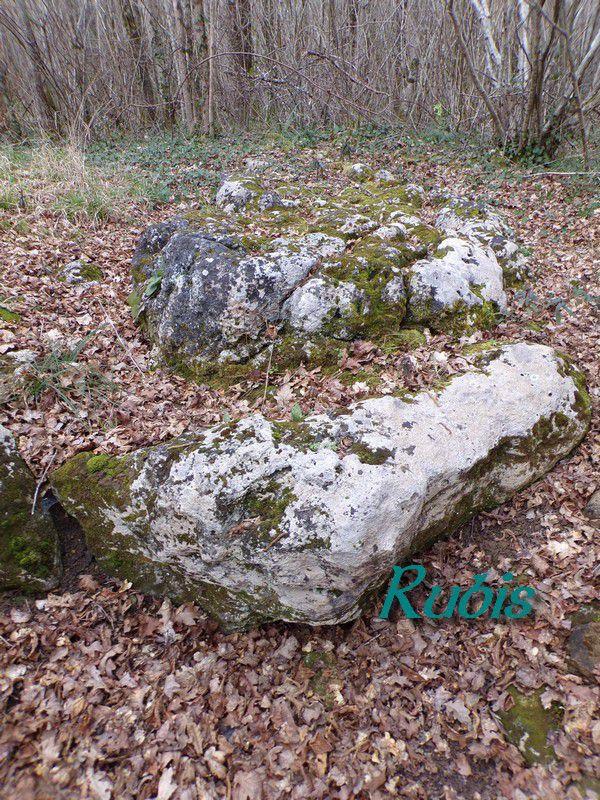 Dolmen de la Table du Roy, Juicq (17)