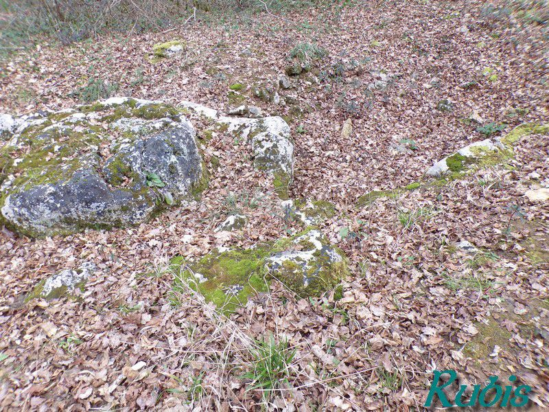 Dolmen de la Table du Roy, Juicq (17)