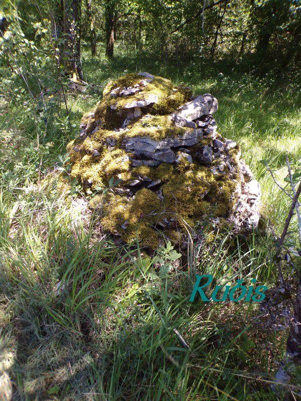 Dolmen de Peyrelevade, Négrondes (24)