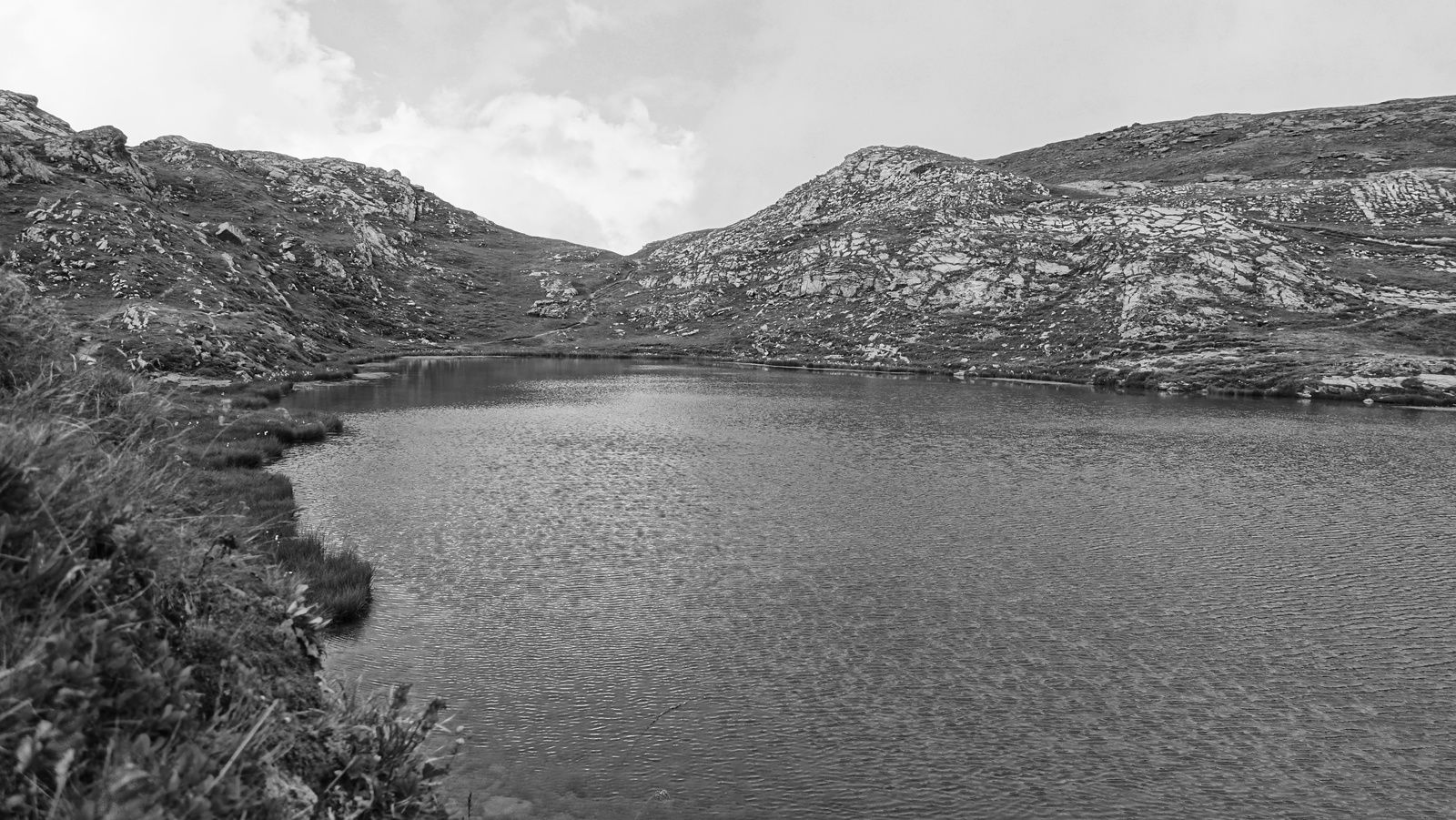 Le lac Erié et ses linaigrettes