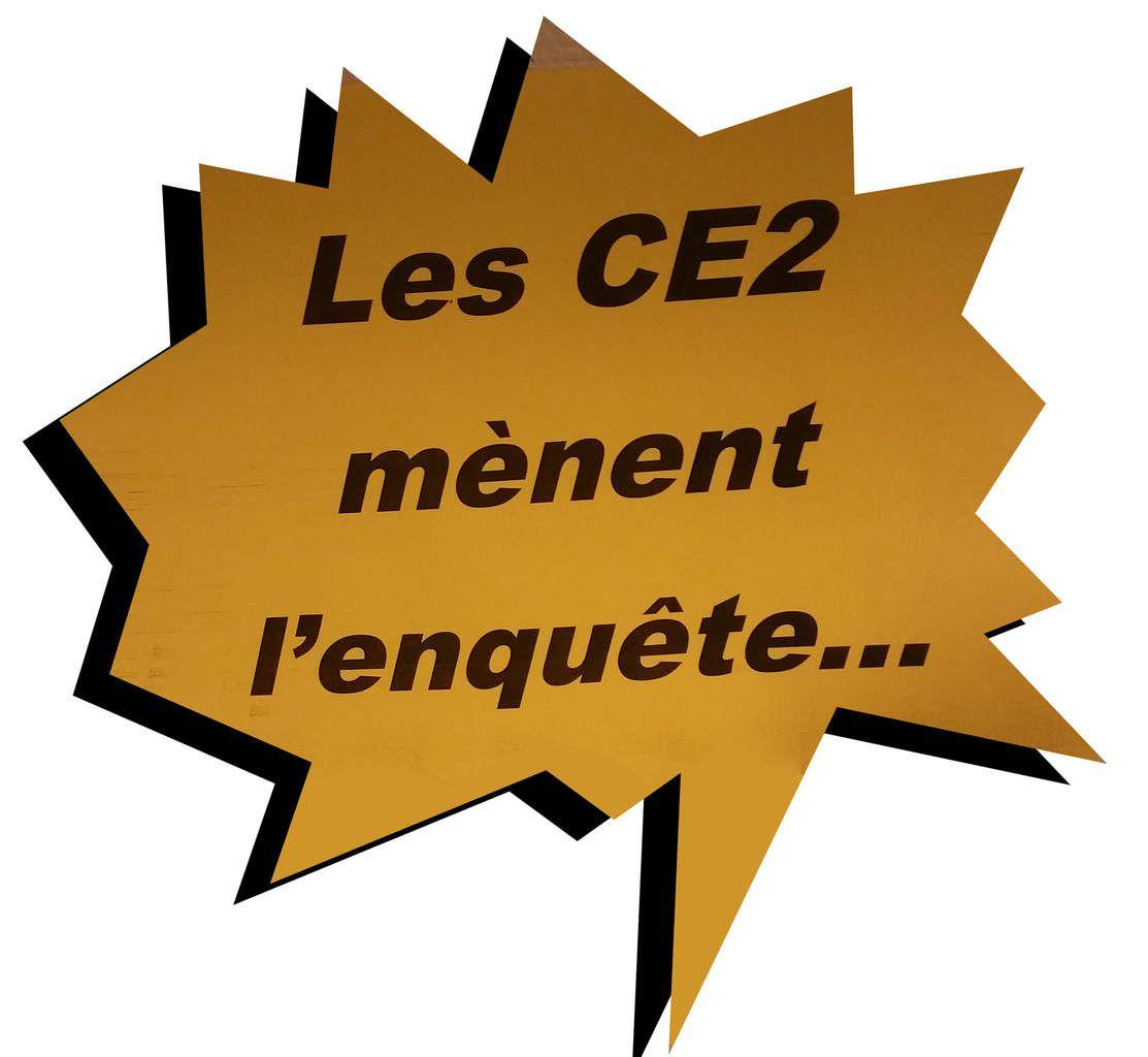 Les C.E.2 mènent l'enquête...