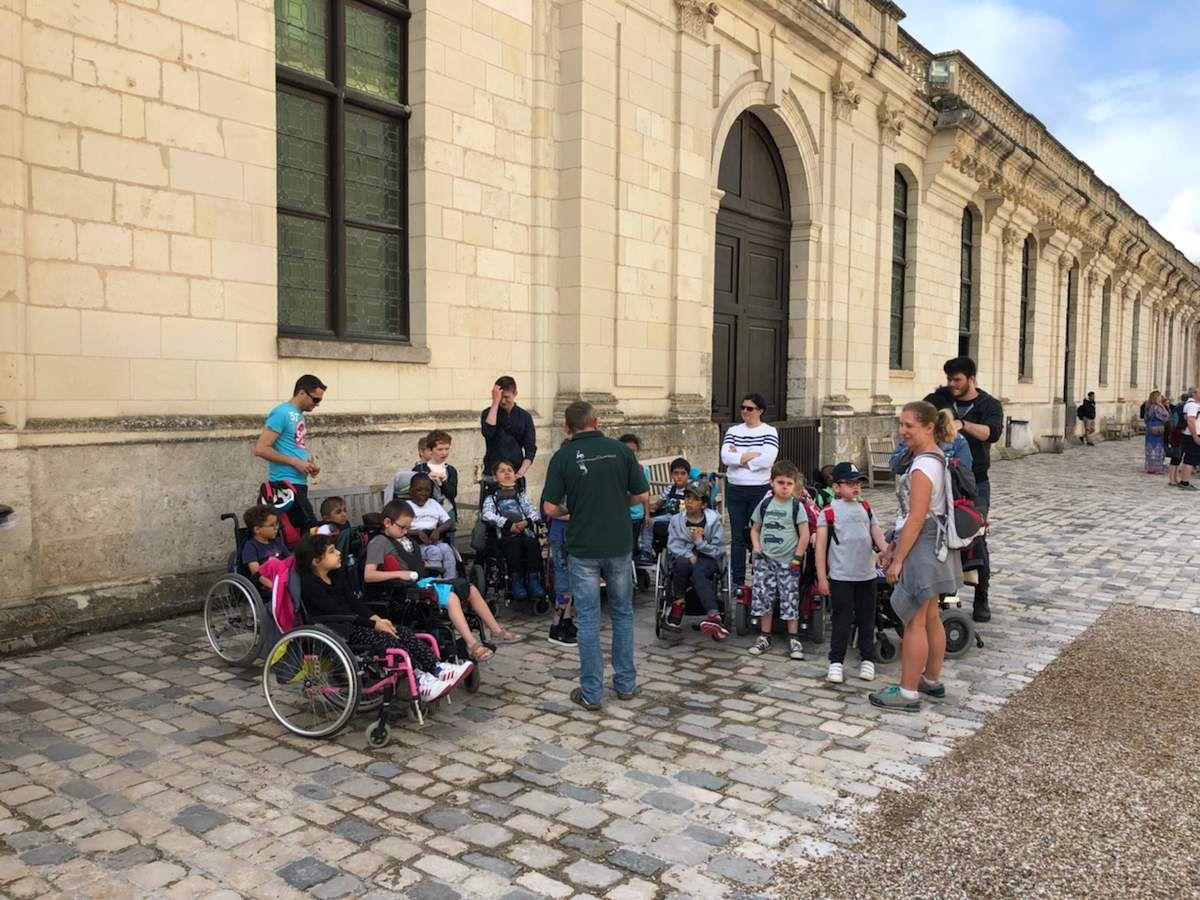 Classe verte de Courcimont en direct au château de Chambord.