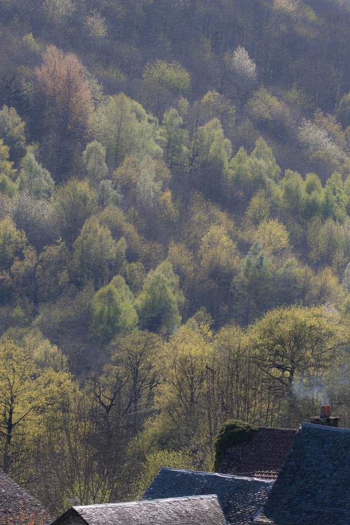 Le printemps est revenu en Aveyron