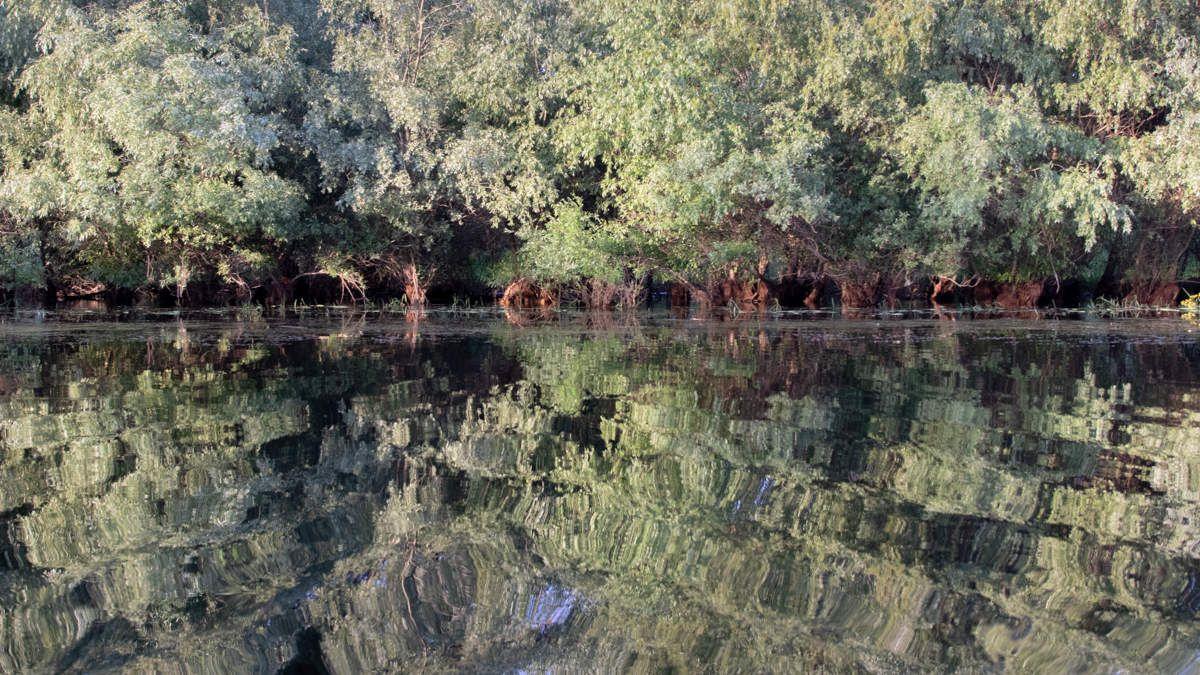 Delta du Danube - Paysages