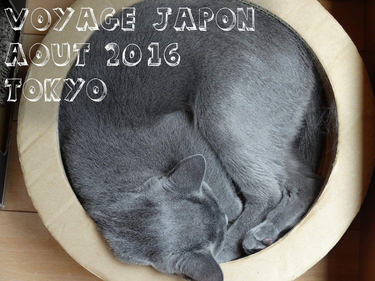 Fin du Voyage Japon août 2016 - Tokyo - Jour 16 à 19