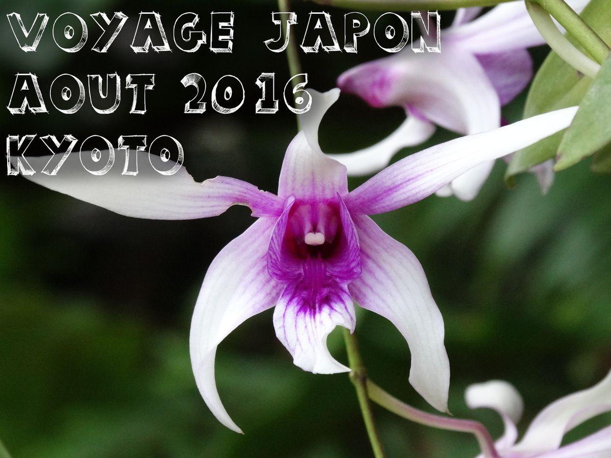 Kyoto - Jour 9