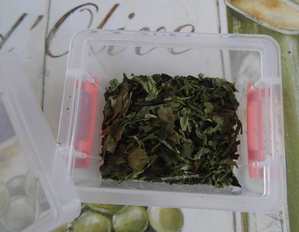 basilic,herbe,assaisonnement,plante aromatique,cuisine italienne,anti-gâchis,zéro gachis,astuce,séchage #zerogaspi