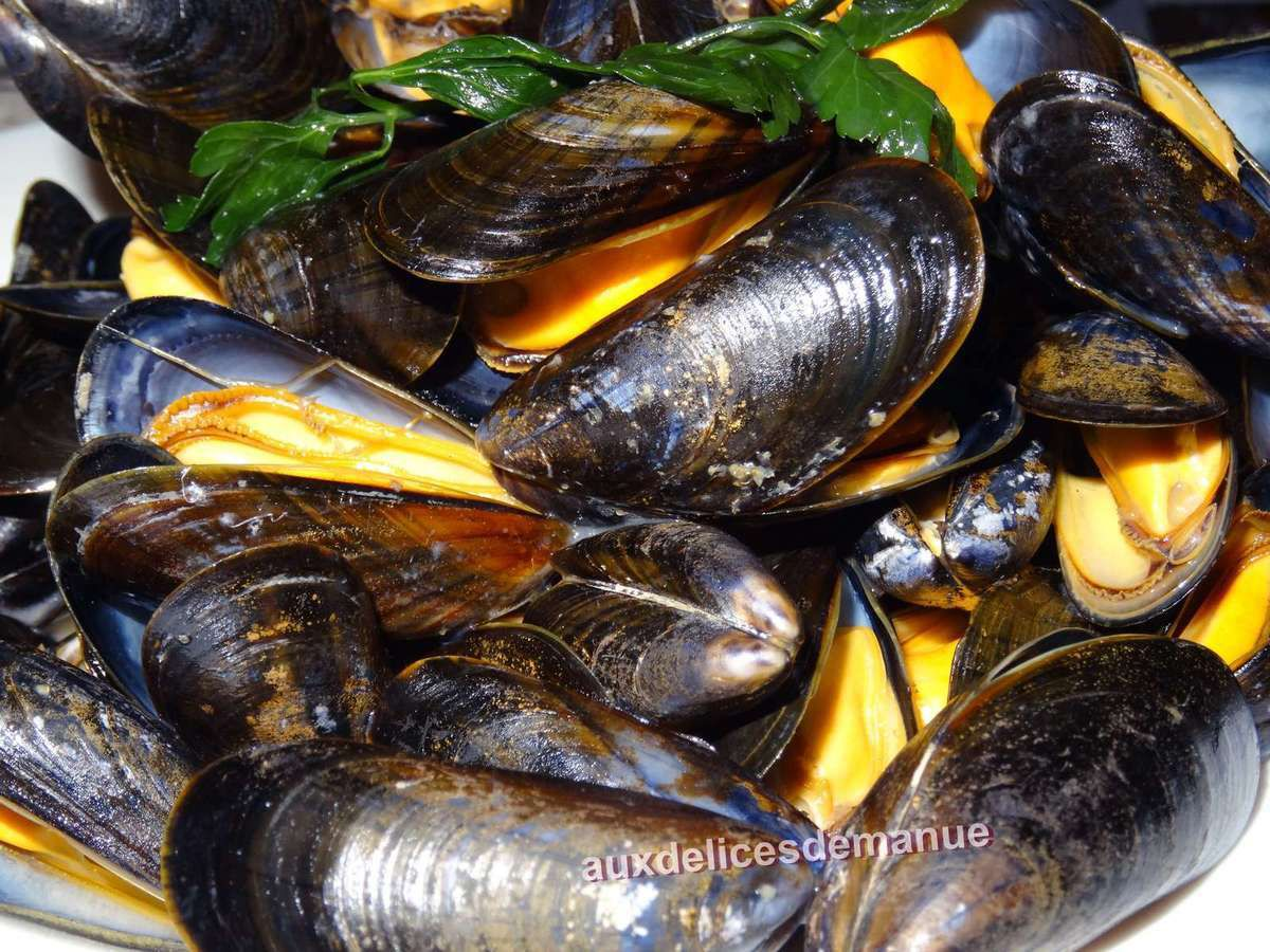 moules, coquillages, recettes