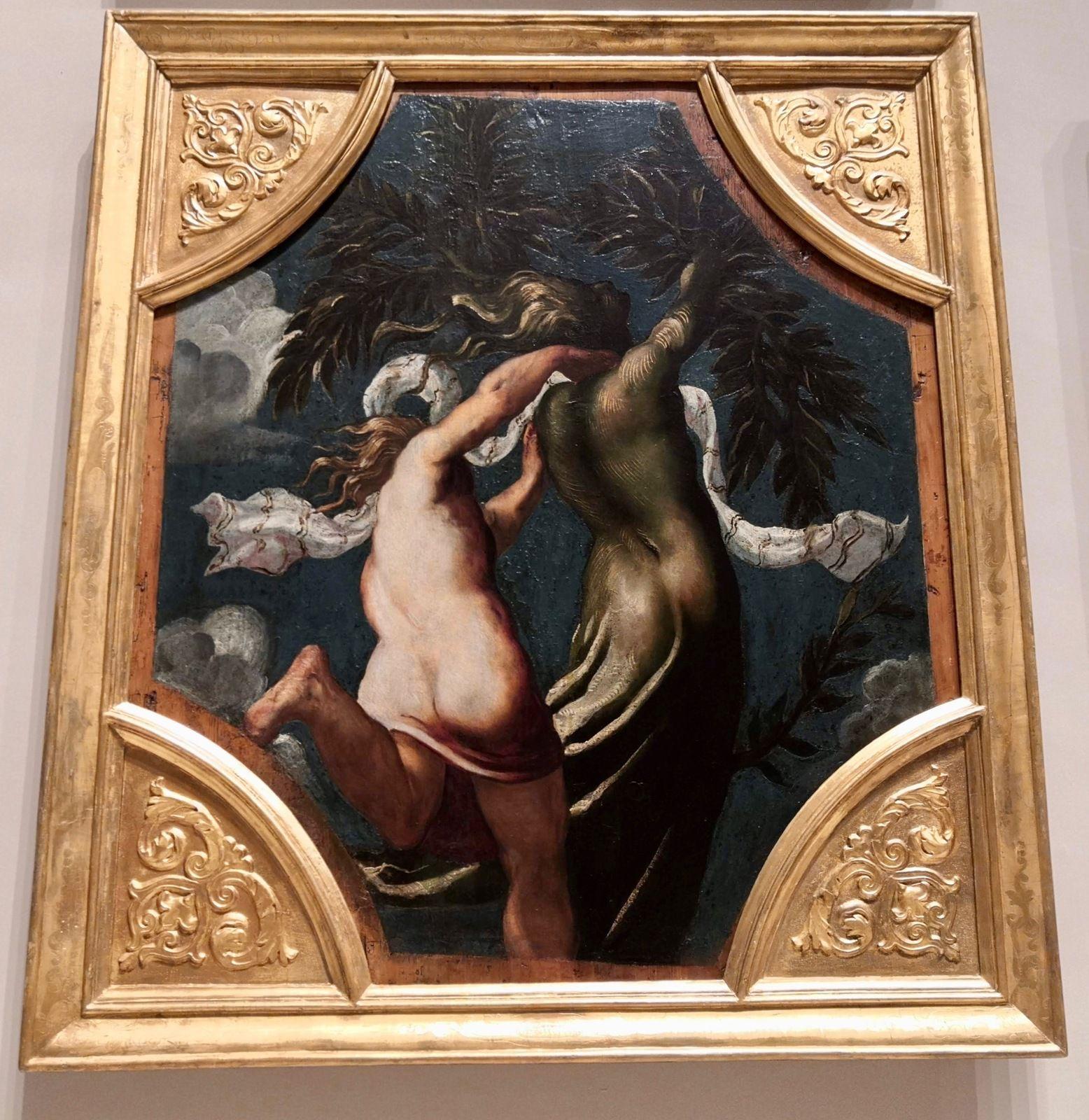Tintoretto (Jacopo Robusti), la corsa d'Ippomene, la dea Latona trasforma, Appolo e Dafne, Il giudizio di Mida, Piramo e Tisbe