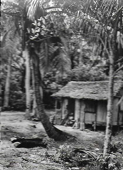 Une case