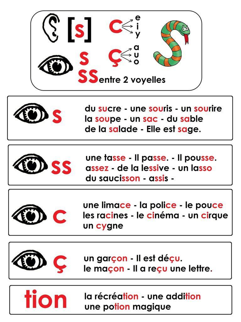 Phonologie CP: le son s; graphies étudiées: s, ss, c, ç et syllabe tion - école maternelle Gellow