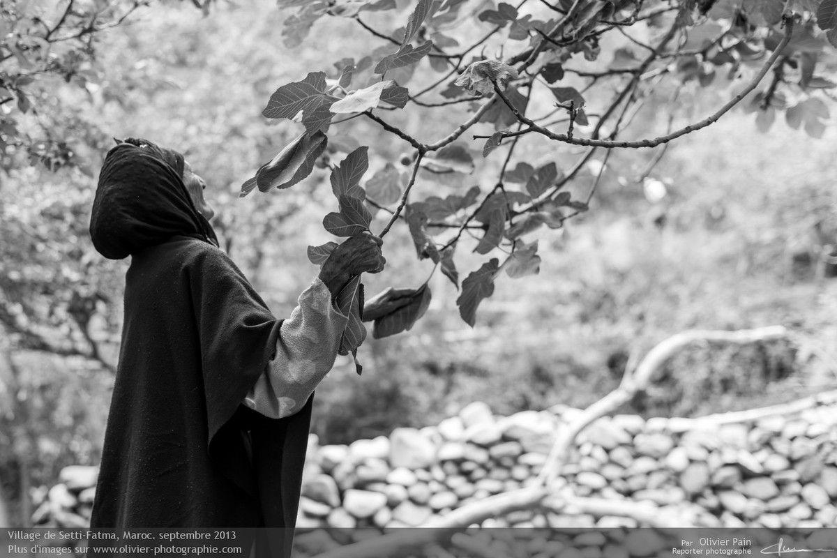 Photo : Cette même vielle femme allant nous chercher des figues. Le village est reconnu pour la qualité de ses arbres fruitiés.