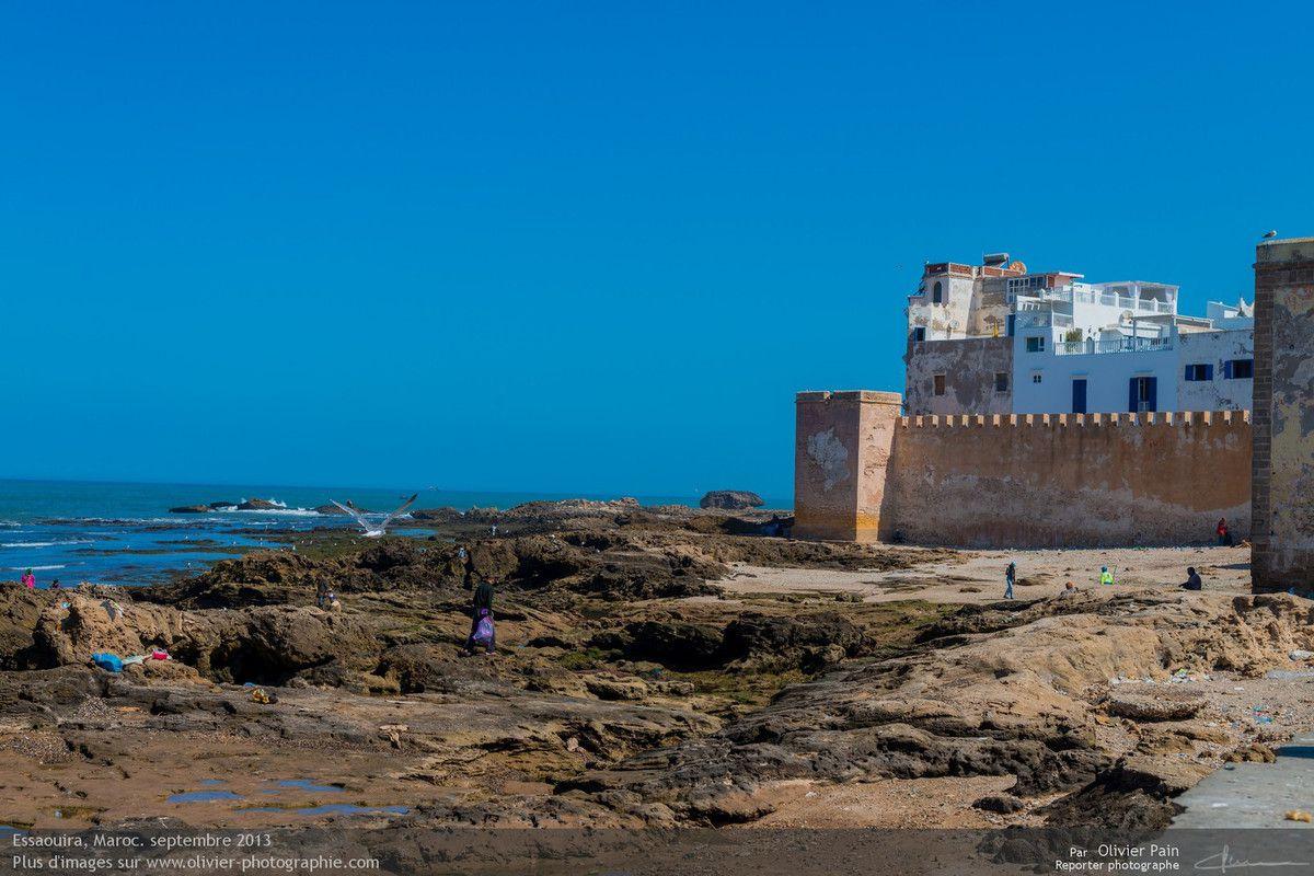 Photo : Vue de la façade atlantique de la ville d'Essaouira.