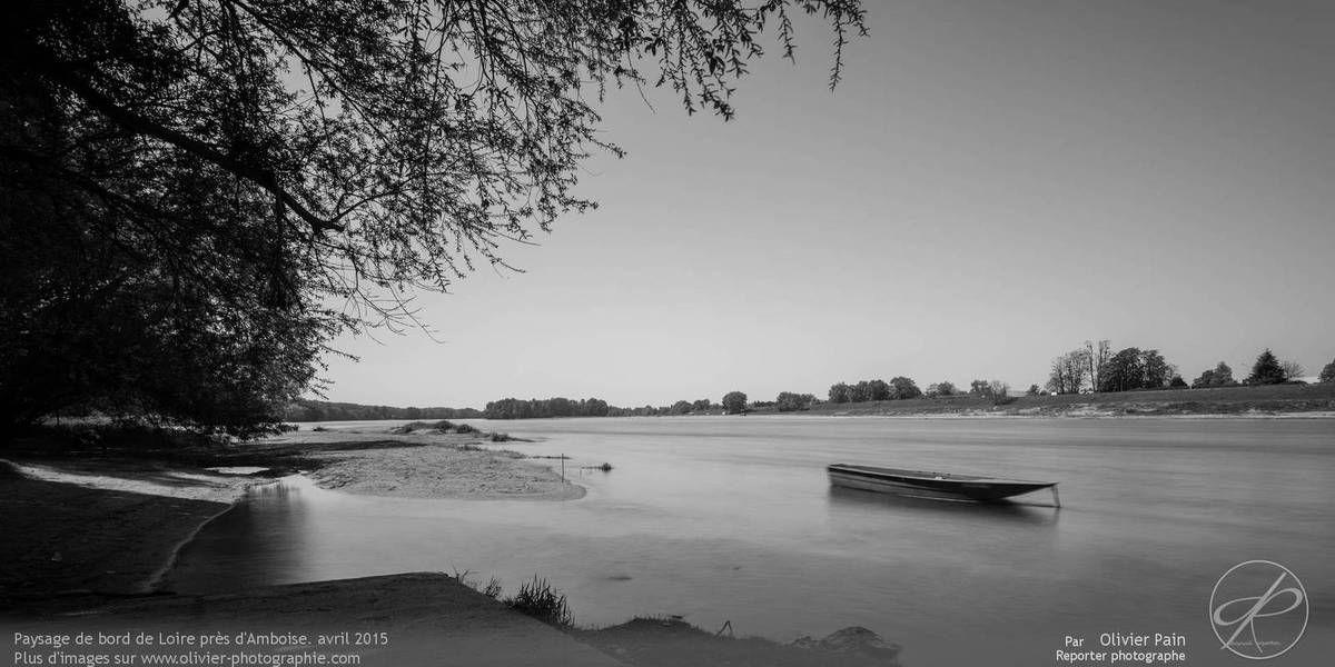 Paysage de Loire près d'Amboise.