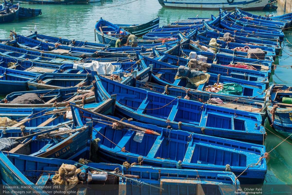 Le port d'essaouira au maroc en Afrique.