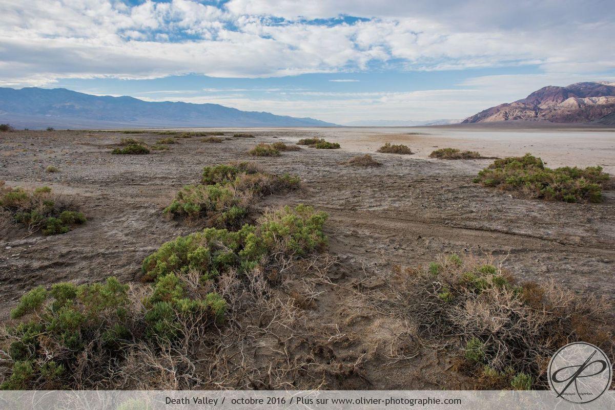 Photoreportage aux états unis, la Death Valley