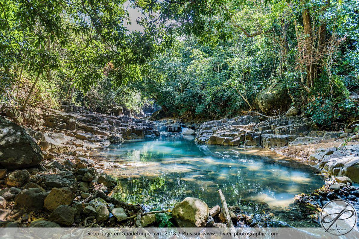 Photographie réalisée en Guadeloupe