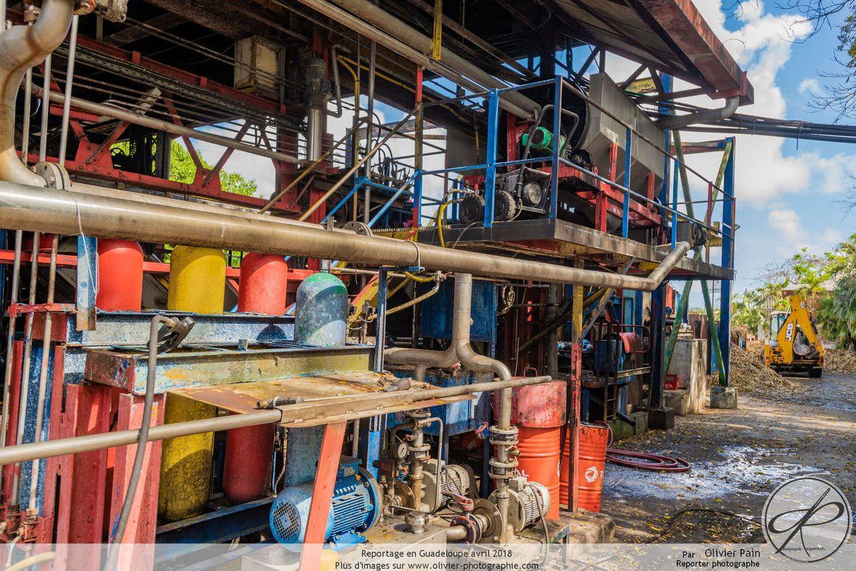 Reportage en Guadeloupe, la distillerie Damoiseau