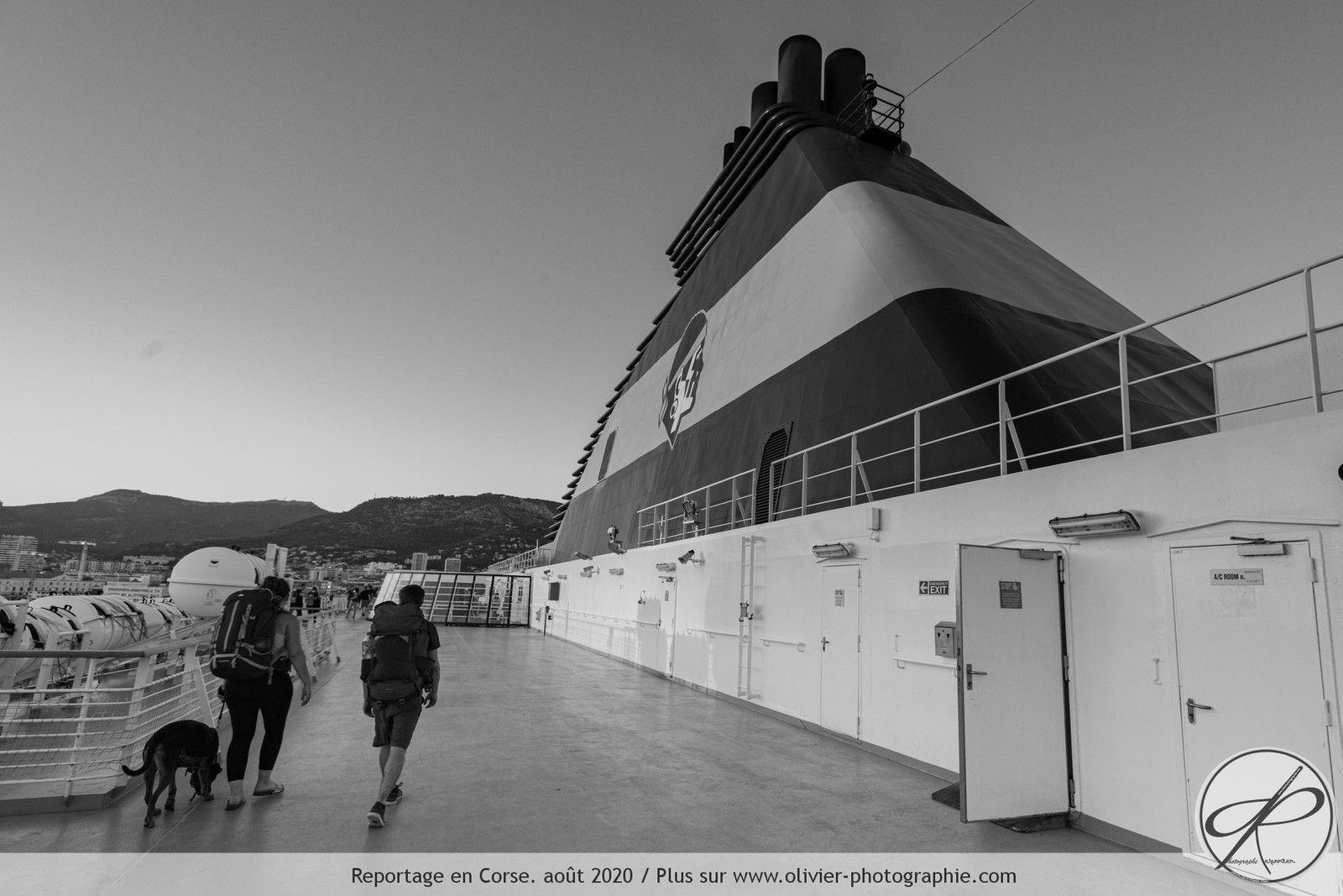 Le ferry est pensé pour les personnes ayant un animal de compagnie. Beaucoup de personnes peuvent donc voyager tranquillement avec leurs chiens et chats. Cela fait partie des initiatives permettant de limiter les abandons