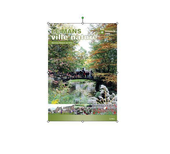Rapport Nature en Ville 2019