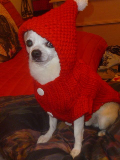 Tuto pull rouge pour Noël mon chichi