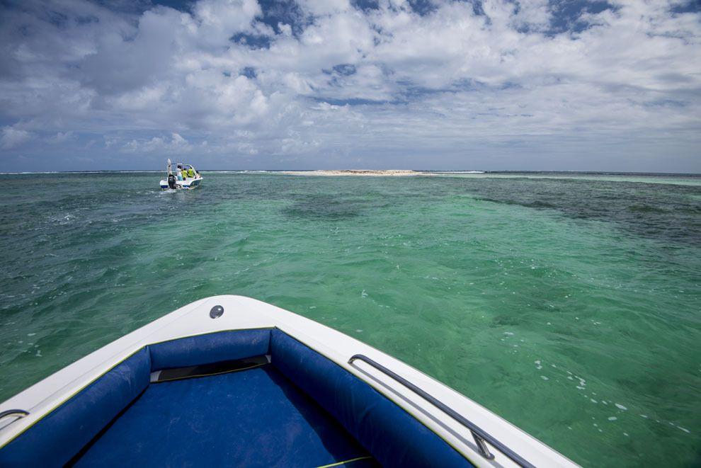 Île aux flamants ou au sable, dans le lagon de Maurice.