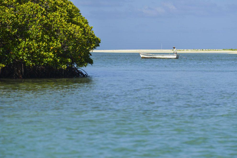 L'île au Cerf, qui abrite un golf, se partage entre la mangrove et le sable blanc.