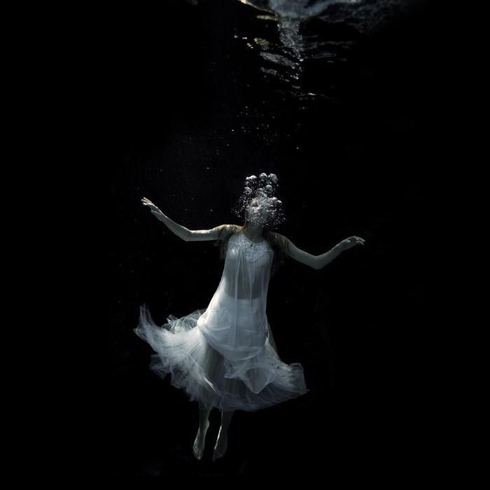 Fotografías sublimes bajo el mar
