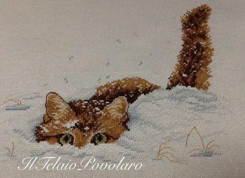 Un gattino che gioca sulla neve  ... riempie di gioia