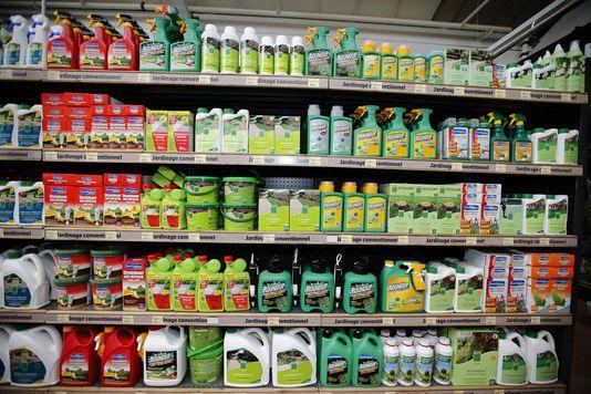 « Monsanto Papers » : des eurodéputés veulent la révision de l'expertise du glyphosate