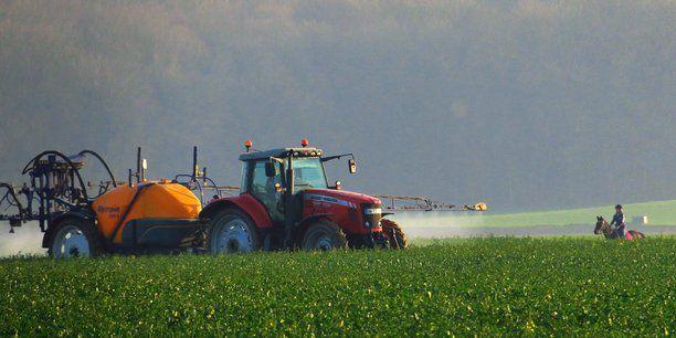 Monsanto admet avoir répandu un pesticide interdit