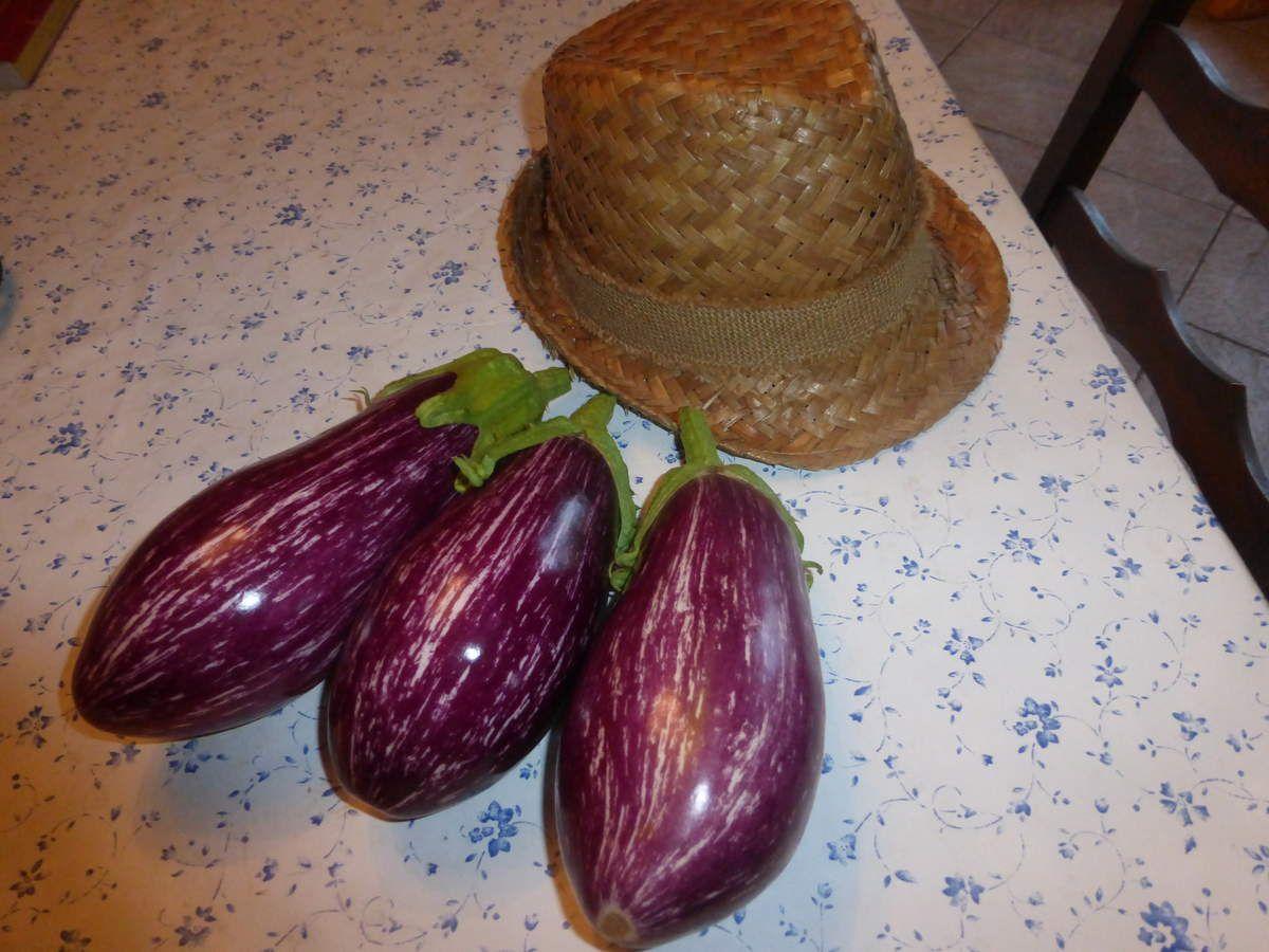 Merci au mystérieux visiteur qui a déposé ces beaux légumes...