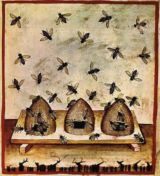 Ruches. Tacuina sanitatis (Manuel médiéval sur la santé,14° s.) (photo Wikimedia)