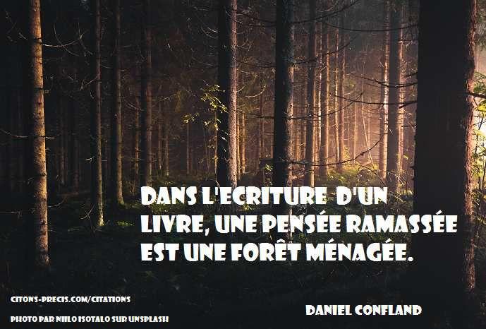 """""""Dans l'écriture d'un livre, une pensée ramassée est une forêt ménagée."""" (Daniel Confland)"""