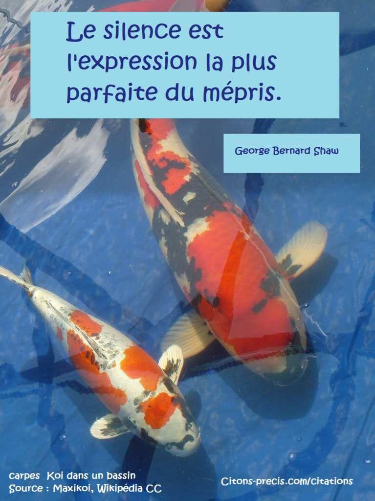 """"""" Le silence est l'expression la plus parfaite du mépris."""" (George Bernard Shaw)"""