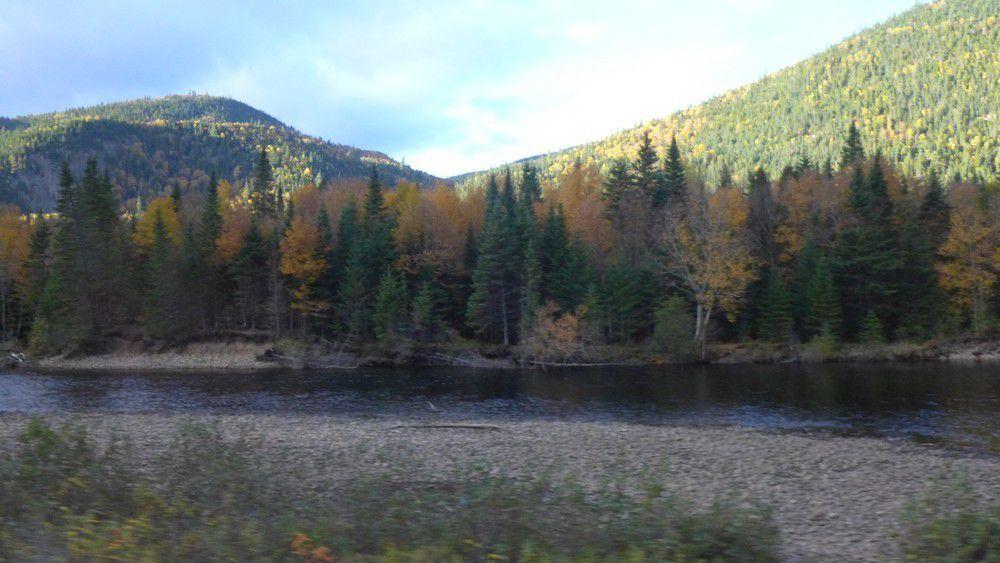 Sur la route vers Sainte-Rose-du -Nord au Canada...