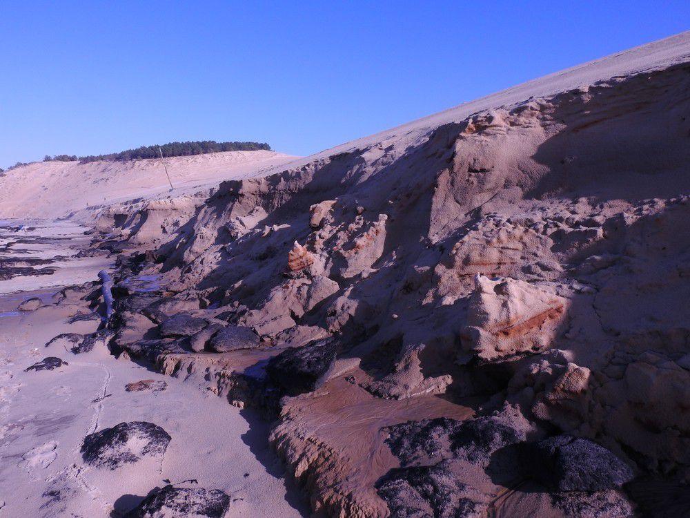 Au pied de la Dune du Pyla - janvier 2018...