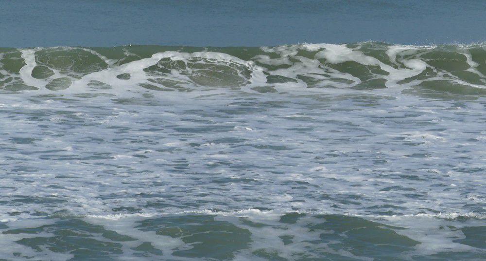 Belle balade au bord de l'Océan, à Lacanau...