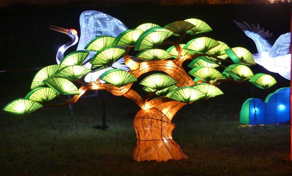 Les grues au Festival des Lanternes Chinoises, à Gaillac...
