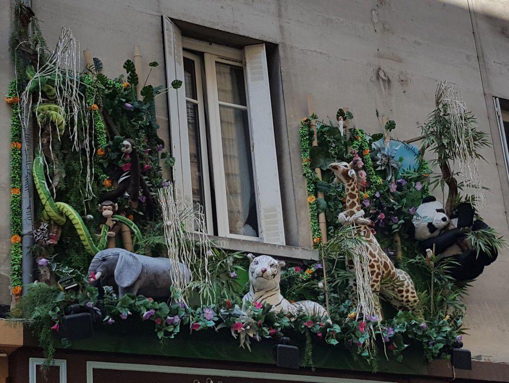 """Les animaux de la jungle au magasin """"Petits Pouces""""..."""